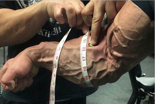 NUTRIMUSCLE - 46 cm de tour d avant-bras   Forum Nutrimuscle ... d270e360f11